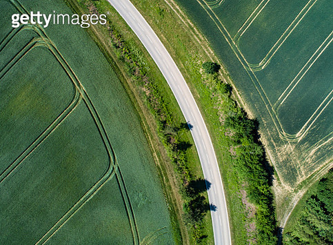 rural road and green fields - gettyimageskorea