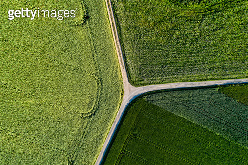 Agricultural landscape from above - gettyimageskorea