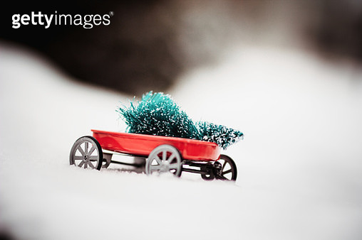 Toy carrying a Christmas Tree - gettyimageskorea