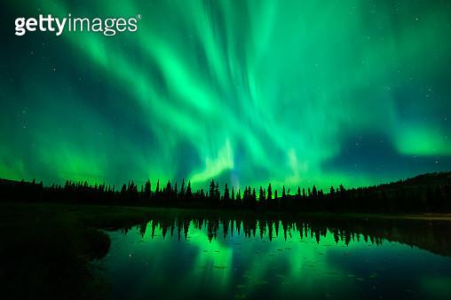 Aurora Borealis, Northern Lights, Autumn, Tonglen Lake, alaska - gettyimageskorea