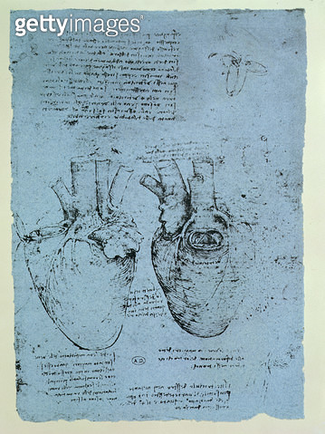 <b>Title</b> : The Heart, facsimile of the Windsor book (pen and ink on paper)<br><b>Medium</b> : <br><b>Location</b> : Bibliotheque des Arts Decoratifs, Paris, France<br> - gettyimageskorea