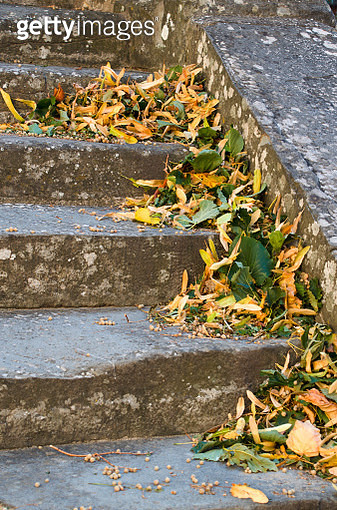 Autumn Leaves on Rustic Steps in Cortona Italy - gettyimageskorea
