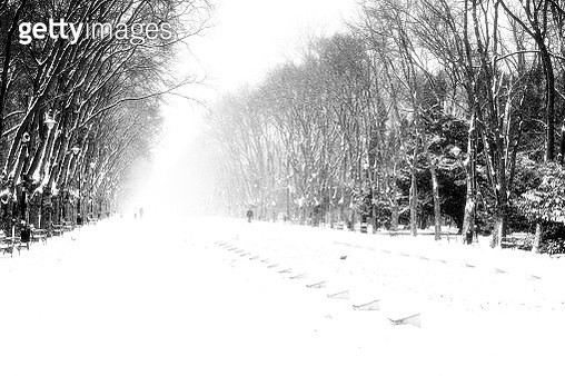A few people walking in a park covered by snow during a harsh winter day - gettyimageskorea