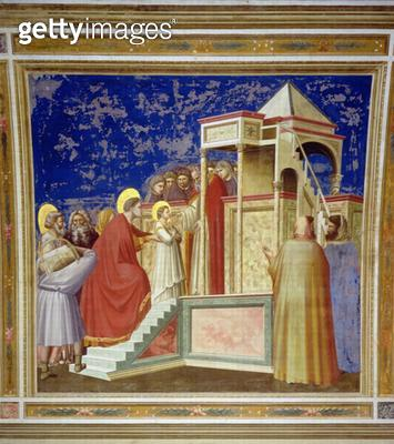 <b>Title</b> : The Presentation of the Virgin at the Temple, c.1305 (fresco)<br><b>Medium</b> : <br><b>Location</b> : Scrovegni (Arena) Chapel, Padua, Italy<br> - gettyimageskorea