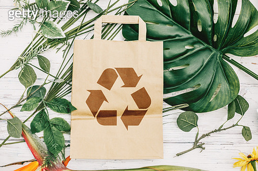 directly above recycled paper bag and green leaves - gettyimageskorea