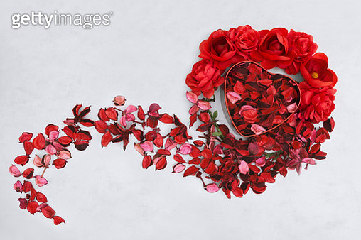Red Dry Flower Petals and Heart Shaped Box on White Background - gettyimageskorea
