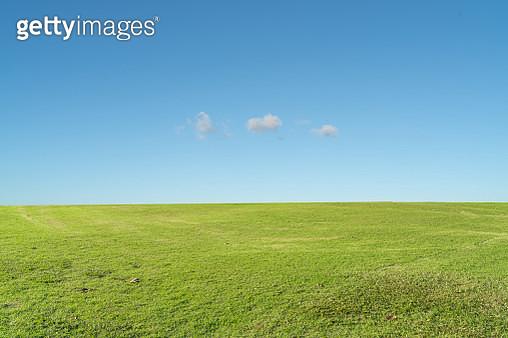 Grass background against sky - gettyimageskorea