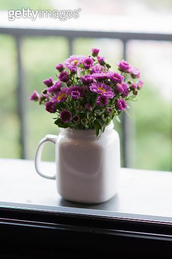 Purple Chrysanthemum flower buds decorating window sill - gettyimageskorea