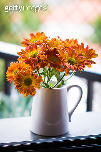 An adorable milk jug with bright orange Chrysanthemum flowers decorating the sill of  apartment window - gettyimageskorea
