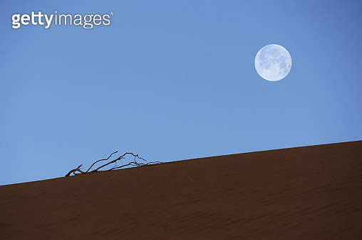 Desert - gettyimageskorea