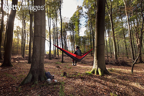 Middle aged man, 53, relaxing in a hammock that is tied up in the forest as the rays of early morning light break through the trees. Colour horizontal with some copy space. Photographed on location in Nordfeld woods on the island of Møn in Denmark. - gettyimageskorea