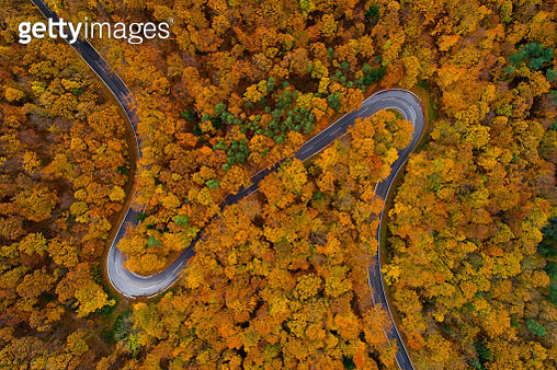 beautiful country road winding through autumn forest shot from top above  point of view drone or birdeye perspective - gettyimageskorea