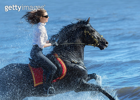 Horse woman and Spanish horse speed running into sea - gettyimageskorea