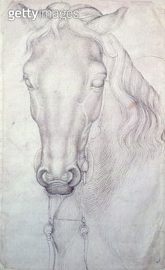 <b>Title</b> : Head of a Horse (pen & ink on paper)<br><b>Medium</b> : pen and ink on paper<br><b>Location</b> : Louvre, Paris, France<br> - gettyimageskorea