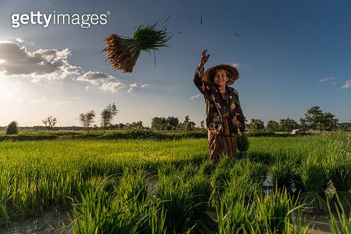 Portrait of a woman in Asia. - gettyimageskorea