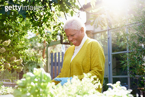 senior woman with pot plants in garden - gettyimageskorea