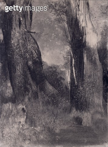 <b>Title</b> : The Trees, 1890s (charcoal on paper)<br><b>Medium</b> : charcoal on paper<br><b>Location</b> : Museum of Fine Arts, Houston, Texas, USA<br> - gettyimageskorea