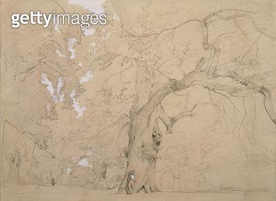 <b>Title</b> : Young Man in Front of a Great Oak, c.1840 (pencil and gouache on paper)<br><b>Medium</b> : pencil and gouache on paper<br><b>Location</b> : Museum of Fine Arts, Houston, Texas, USA<br> - gettyimageskorea