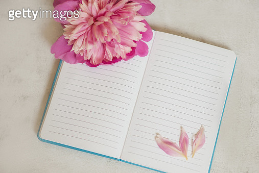 a notebook with empty pages is lying on a light background. beautiful pink peony flower. the view from the top - gettyimageskorea