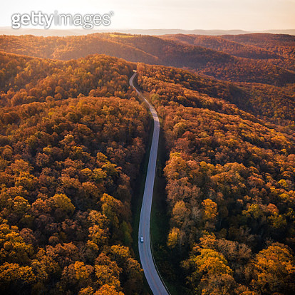 Aerial view of road amidst trees during autumn,Arkansas,United States,USA - gettyimageskorea