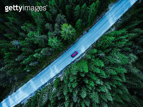 This image was taken on the west coast of Norway. The country road is surrounded by spruce trees. - gettyimageskorea