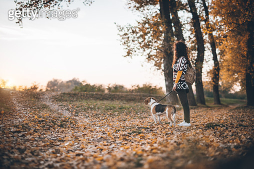 Autumn walk by the river - gettyimageskorea