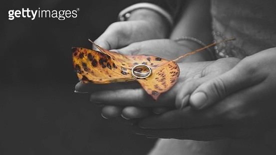 Cropped Hands Of Mother And Daughter Holding Wedding Rings On Autumn Leaf - gettyimageskorea