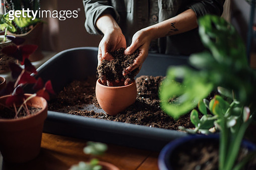 Close up shot of hands working with soil - gettyimageskorea