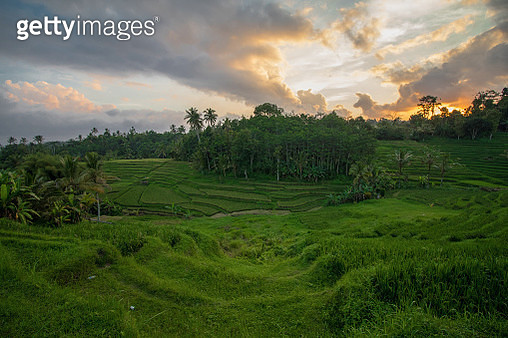 Sunset At Rice Terrace - gettyimageskorea