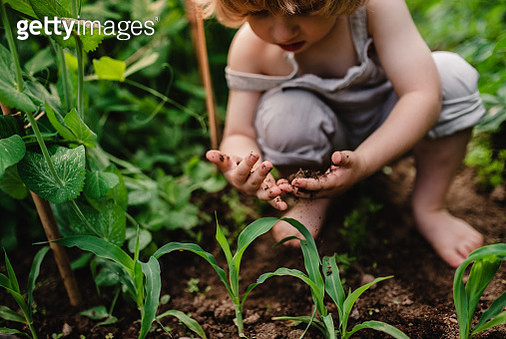 A little boy in the garden, playying with soil. - gettyimageskorea