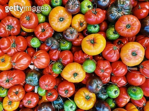 Colorful tomatos on the farmer's market - gettyimageskorea