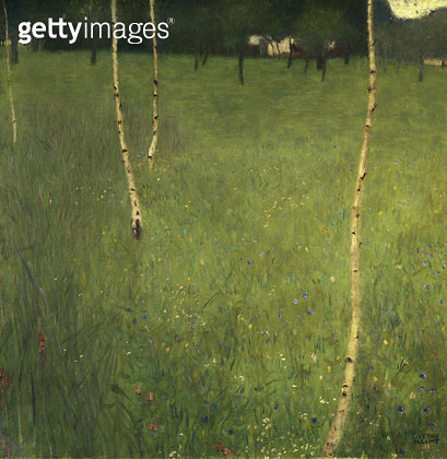 <b>Title</b> : Farmhouse with Birch Trees, 1900 (oil on canvas)<br><b>Medium</b> : oil on canvas<br><b>Location</b> : Private Collection<br> - gettyimageskorea
