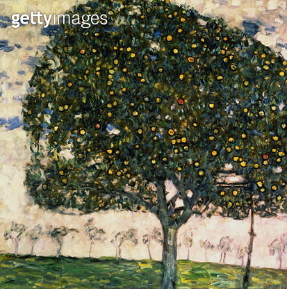 The Apple Tree, 1916 (oil on canvas) - gettyimageskorea