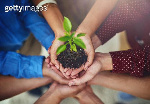 Success means helping each other grow - gettyimageskorea