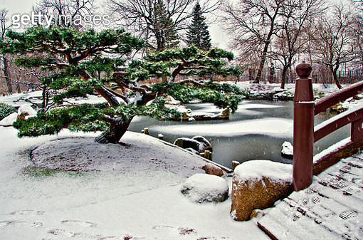 Osaka Garden Snowfall (6) - gettyimageskorea