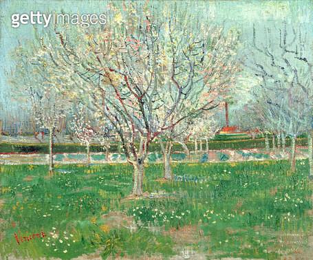 <b>Title</b> : Orchard in Blossom, 1880 (oil on canvas)<br><b>Medium</b> : oil on canvas<br><b>Location</b> : National Gallery of Scotland, Edinburgh, Scotland<br> - gettyimageskorea