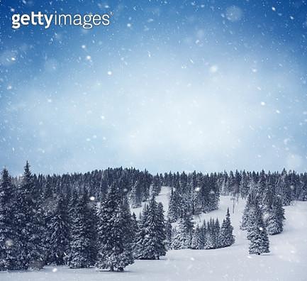 Snowy Winter Fairytale - gettyimageskorea