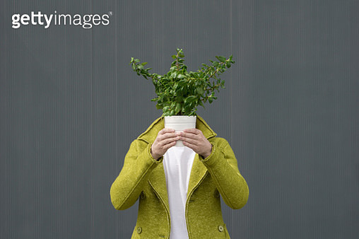 Close-Up Of Person With Potted Plant Against Grey Background - gettyimageskorea