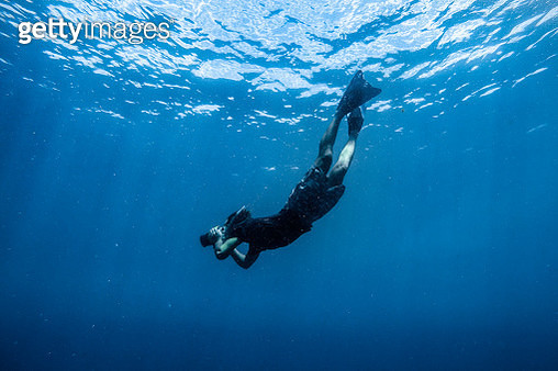 Underwater Photographer - gettyimageskorea