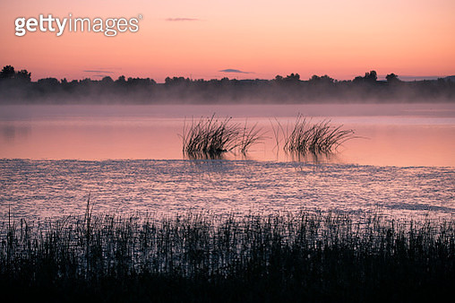 Misty morning in the lake side,Inner Mongolia,China - gettyimageskorea