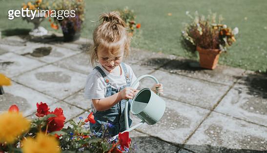 Child watering plants in a garden. - gettyimageskorea