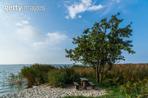 Rest area with apple tree - gettyimageskorea