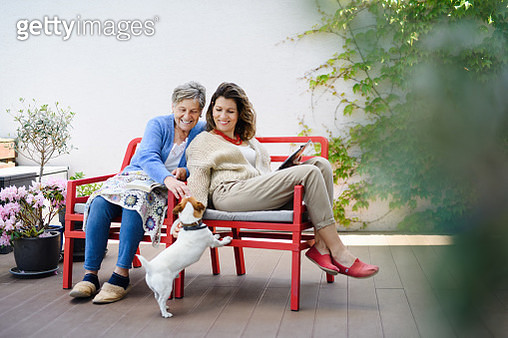 Portrait of woman with senior mother and dog sitting on bench outdoors, resting. - gettyimageskorea