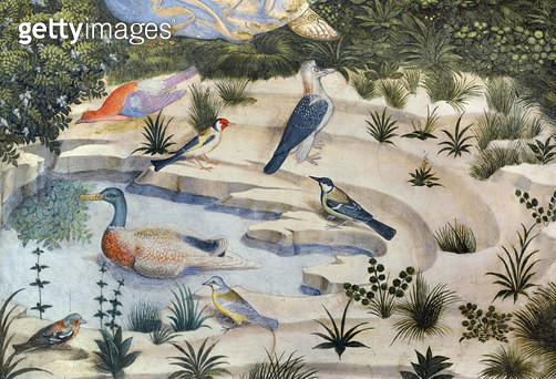 <b>Title</b> : Birds around a pond, detail from the Journey of the Magi cycle in the chapel, c.1460 (fresco) (detail of 70610)<br><b>Medium</b> : <br><b>Location</b> : Palazzo Medici-Riccardi, Florence, Italy<br> - gettyimageskorea