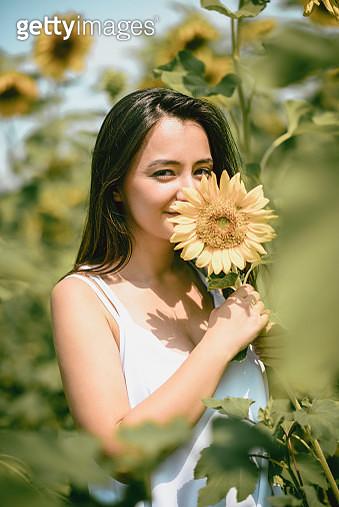 Female Beauty Smelling Sunflower - gettyimageskorea