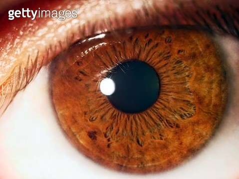 Extreme Close-Up Of Human Eye - gettyimageskorea