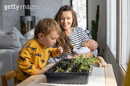 A mother and her toddler son planting an indoor garden during the COVID home quarantine. - gettyimageskorea