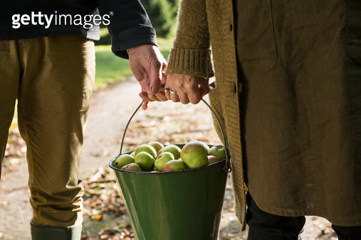 Couple carrying bucket of apples - gettyimageskorea