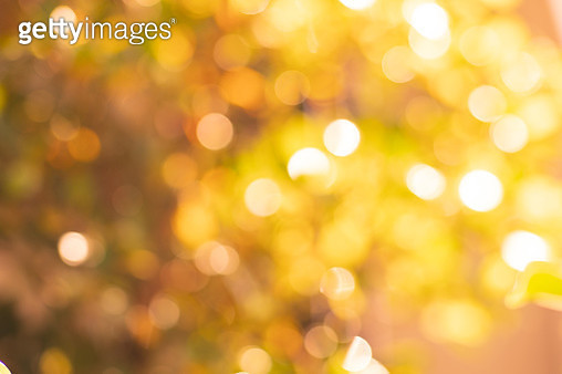 Autumn season bokeh background.Vibrant and Vivid color nature. - gettyimageskorea