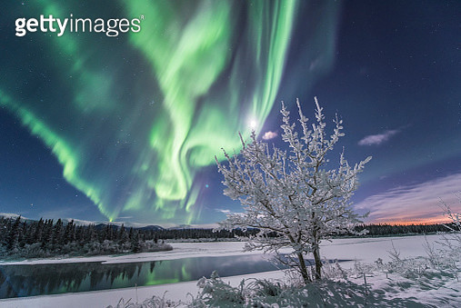 Northern lights, Yukon River, Yukon, Canada. - gettyimageskorea